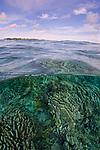 Kurkap Seamount, Indonesia