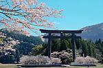 Kumano Hongu Taisha festival, Japan 0417