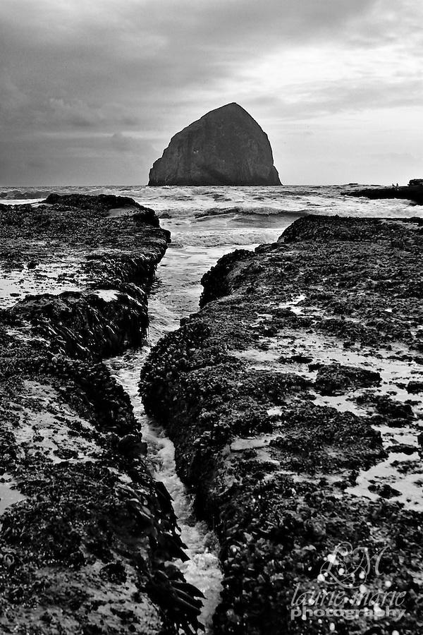 Haystack rock in Cape Kiwanda, Oregon Coast at sunset