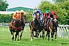 Amizzen Grace winning at Delaware Park on 6/23/16