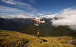 Squirrel helicopter hunting for red deer in Sutherland Sound Fiordland National Park New Zealand