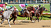 Forest Jingles winning at Delaware Park racetrack on 6/2/14