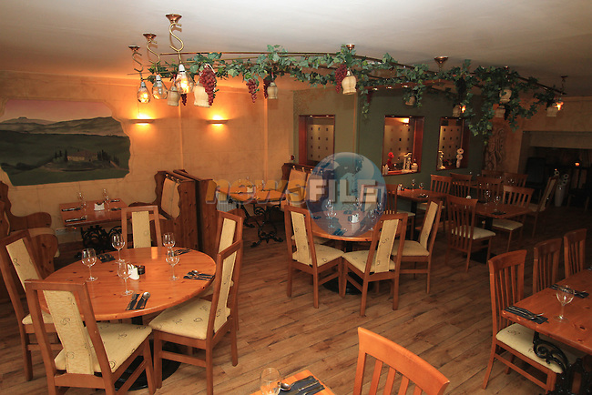 Antica Toscana..(Photo credit should read Jenny Matthews www.newsfile.ie)....This Picture has been sent you under the conditions enclosed by:.Newsfile Ltd..The Studio,.Millmount Abbey,.Drogheda,.Co Meath..Ireland..Tel: +353(0)41-9871240.Fax: +353(0)41-9871260.GSM: +353(0)86-2500958.email: pictures@newsfile.ie.www.newsfile.ie.
