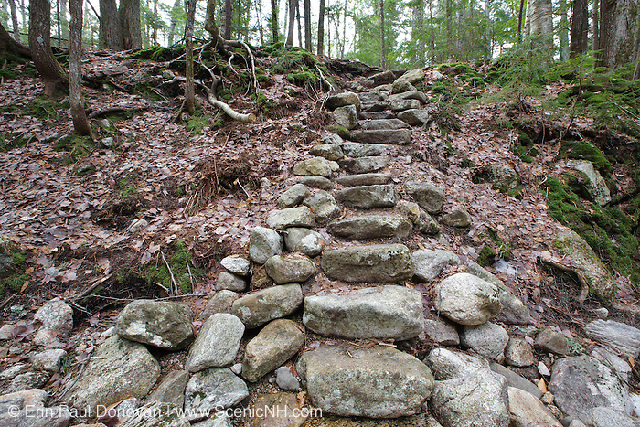 Stone steps along Fletcher Cascades Trail during the spring months in Waterville Valley, New Hampshire USA.