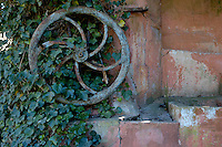 Iron wheel from an old well covered in ivy against an ochre wall, Provence, France.