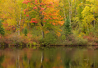 The East Fork of the Chippewa River in the Chequamegon National Forest.