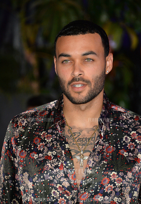 "Don Benjamin at the Los Angeles premiere of ""Jumanji: Welcome To the Jungle"" at the TCL Chinese Theatre, Hollywood, USA 11 Dec. 2017<br /> Picture: Paul Smith/Featureflash/SilverHub 0208 004 5359 sales@silverhubmedia.com"