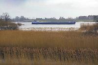 Binnenschiff mit Zollenspieker Vorland: EUROPA, DEUTSCHLAND, HAMBURG, (EUROPE, GERMANY), 29.01.2013: Binnenschiff mit Zollenspieker Vorland.  Das Naturschutzgebiet Zollenspieker Vorland  ist einer der letzten Tideauenwaelder Europas und ein Suesswasserwatt. Es liegt in Hamburg in den Vierlanden im Suedosten der Hansestadt ausserhalb der Hochwasserschutzanlagen Hamburgs und wird daher die taegliche Tide ueberflutet. Das Gebiet erstreckt sich am Nordufer der Elbe oestlich des Zollenspieker Faehrhaus.  .Aufgrund seiner besonderen Lage zwischen Fluss und Land ist das Gebiet ein wichtiges Refugium fuer viele Pflanzen- und Tierarten, die anderswo durch Kultivierung der Landschaft laengst verdraengt sind. Es ist das artenreichste Naturschutzgebiet im Hamburger Raum. Ein Binnenschiff faehrt darann vorbei...