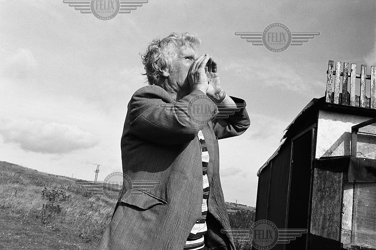 A man shouts at racing pigeons flying in from the south, trying to encourage them to return to the corrent cree (shed), in County Durham.