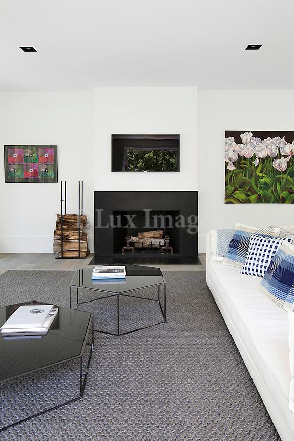 Modern white sofa in the living room