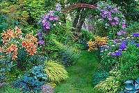 Vashon-Maury Island, WA: Summer perennial garden featuring lilies, clematis, hostas, Japanese grasses and heuchera