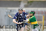 Brian Murphy Tralee IT and Kerry's James Flaherty gets tangled up in the Waterford Crystal Hurling cup in Fitzgerald Stadium on Sunday