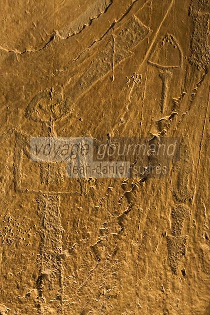 Europe/France/Provence-Alpes-Côtes d'Azur/06/Alpes-Maritimes/Alpes-Maritimes/Arrière Pays Niçois/Tende: Le Musée des Merveilles- Moulages de quelques-unes des quarante mille gravures rupestres entourant le Mont Bego