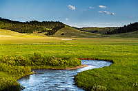 A trout stream winding through a Wyoming mountain ranch below a rising moon at dusk.