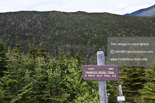 The Chandler Brook Trail is pictured on Mount Washington in New Hampshire Friday June 14, 2013.