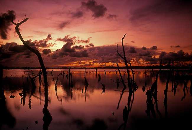 Sunset, Nichupte Lagoon, Quintana Roo State, Yucatan Peninsula, Mexico, North America