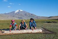 Mongolia, Bayan-Ulgii, Ulgii, Altai Mountains. Family making hand made felt yurt, getting ready to relocate for winter. Tsambagarav Mountain.