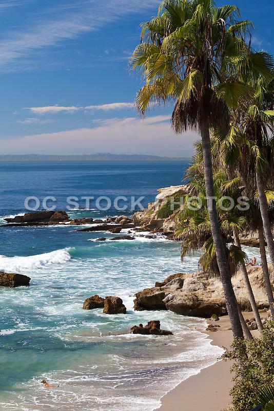 Along The Coast In Laguna Beach