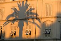 France/06/Alpes-Maritimes/Cannes: Façade square Mérimée dans la lumière du soir - Ombre de palmier