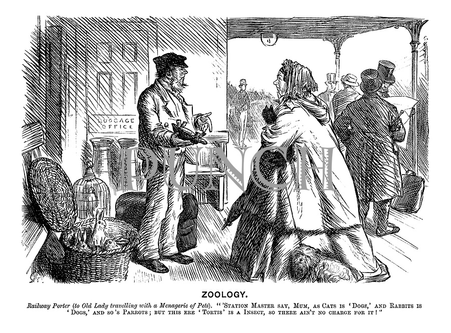 """Zoology. Railway Porter (to old lady travelling with a menagerie of pets). """"'Station Master say, Mum, as cats is 'dogs,' and rabbits is 'dogs,' and so's parrots; but this ere 'tortis' is an insect, so there ain't no charge for it!"""""""
