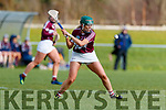 Kerry in action against Fiona Leavy Westmeath in the 2019 Camogie League Division 2 at John Mitchells GAA grounds in Tralee, on Sunday.