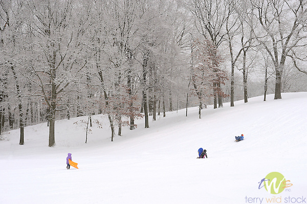 Sledding at Williamsport Country Club.