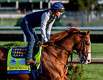 LOUISVILLE, KENTUCKY - APRIL 27: Improbable, trained by Bob Baffert, exercises in preparation for the Kentucky Derby at Churchill Downs in Louisville, Kentucky on April 27, 2019. Scott Serio/Eclipse Sportswire/CSM