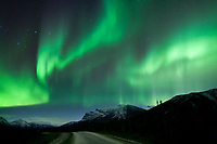 Green and violet bands of aurora borealis, or northern lights swirl over the James Dalton Highway, and the mountain ridges of the Brooks Range, Arctic, Alaska.