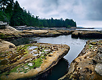 Beautiful landscape and tide pools at Botanical Beach Juan de Fuca Provincial Park shoreline scenery, Port Renfrew, Vancouver island, British Columbia, Canada 2017 Image © MaximImages, License at https://www.maximimages.com