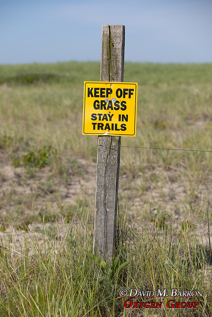 'Keep Off Grass Stay In Trails' Sign