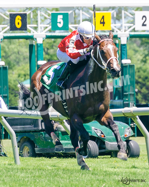 Shamrock Empire winning at Delaware Park on 6/13/16