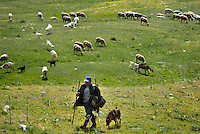 Gran Sasso National Park, Abruzzo, Italy, June 2008. A shepherd with his dogs and sheep. The green plains of Campo Impertore are surrounded by High mountains. Photo by Frits Meyst/Adventure4ever.com