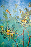 Painted Fruit Tress in the Roman fresco of a garden from Villa Livia (Early first century AD), Rome, Livia was the wife of Roman emperor Augustus.  Museo Nazionale Romano ( National Roman Museum), Rome, Italy.<br /> Trees and shrubs had symbolic importance to the Romans as can be see by the plants used in the trompe-l&rsquo;&oelig;il frescoes from the Villa Livia, Rome, which contains plants linked to the deities particularily venerated by Augustus and Livia.