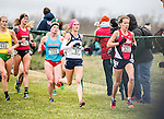 _E1_8246<br /> <br /> 16X-CTY Nationals<br /> <br /> Men's Team finished 7th<br /> Women's team finished 10th<br /> <br /> LaVern Gibson Cross Country Course<br /> Terre Houte, IN<br /> <br /> November 19, 2016<br /> <br /> Photography by: Nathaniel Ray Edwards/BYU Photo<br /> <br /> &copy; BYU PHOTO 2016<br /> All Rights Reserved<br /> photo@byu.edu  (801)422-7322<br /> <br /> 8246