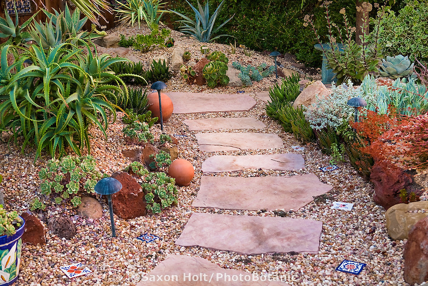 Stepping stone path in gravel (Salmon Bay)with succulents in small California garden