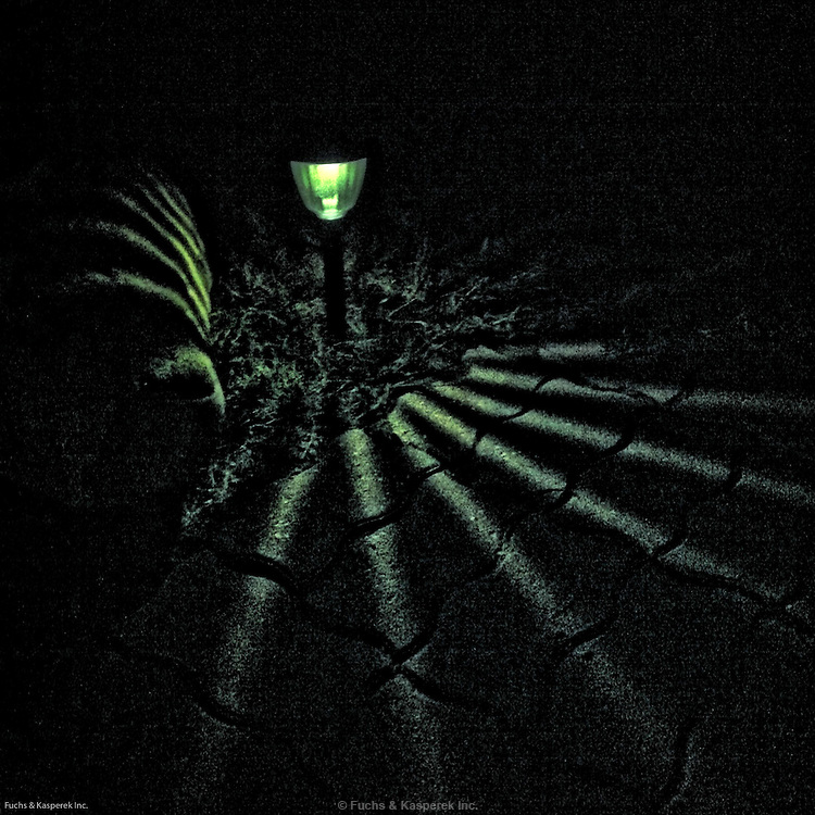 iPhone photography by Larry Kasperek. A solar patio light illuminates a path.