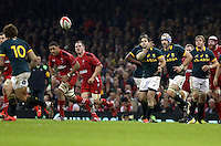 Pictured: Jan Serfontein of South Africa passing the ball Saturday 29 November 2014<br />