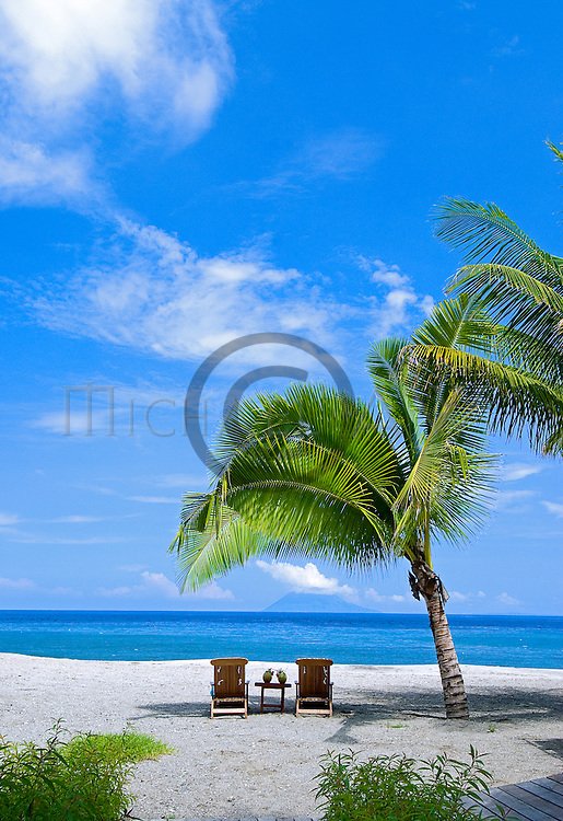 spa, sun, sea, holiday, resort, pool, tropics, coconut palm