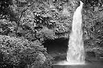 Bouma National Heritage Park and Tavaro Waterfalls, Taveuni, Fiji; the largest of the three waterfalls, this first waterfall is only a 10 minute hike up the path from the visitors center