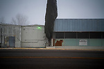 Factory.<br /> Alpine, Texas. 01.01.2019<br /> Photo by Thierry Gourjon.