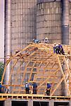 Amish barn raising. Nippenose Valley, PA. 1998