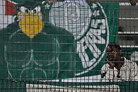 SÃO PAULO, SP, 01 DE SETEMBRO DE 2012 - CAMPEONATO BRASILEIRO - PALMEIRAS x GREMIO: Torcida do Palmeiras durante partida Palmeiras x Gremio, válida pela 20ª rodada do Campeonato Brasileiro no Estádio do Pacaembú. FOTO: LEVI BIANCO - BRAZIL PHOTO PRESS
