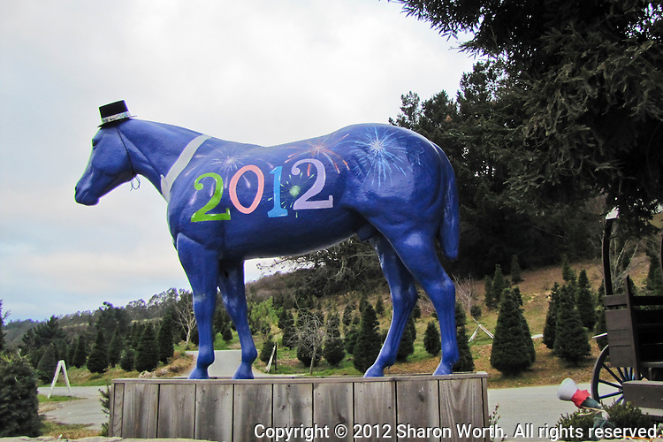 Lemo's Horse in Half Moon Bay celebrates the New Year.