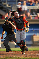Aberdeen IronBirds catcher Jerry McClanahan (19) looks for a popup in front of umpire Jhonatan Biarreta during a game against the Batavia Muckdogs on July 15, 2016 at Dwyer Stadium in Batavia, New York.  Aberdeen defeated Batavia 4-2.  (Mike Janes/Four Seam Images)