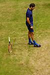20160618 ATP Gerry Weber Open, HALBFINALE