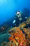 Orchid Island (蘭嶼), Taiwan -- Diver at Ba Dai Wreck (八代沉船)