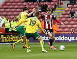 David Brooks of Sheffield Utd in action with Time Klose and Tom Trybull of Norwich City Norwich Cityduring the Championship match at Bramall Lane Stadium, Sheffield. Picture date 16th September 2017. Picture credit should read: Jamie Tyerman/Sportimage