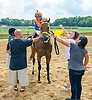Sunshine Included winning The Small Wonder Stakes at Delaware Park on 9/10/16