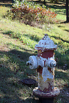 A paint chipped water hydrant in the city of Branson, Missouri that has been painted numerous times