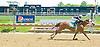 Not For Money winning at Delaware Park on 5/19/12